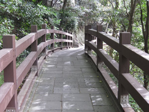 Bridge across a gap